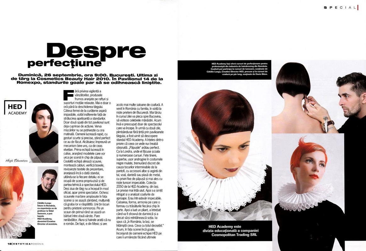 Articol</br>Estetica</br>nr. 13 / 2011