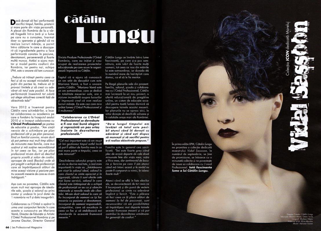 Articol</br>Les Professionneles</br>nr. 2 / 2012
